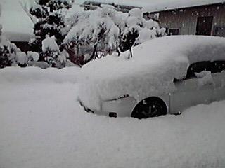 車が埋まってしまいました…