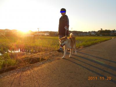 snap_tikagenoko414_2011111124053.jpg