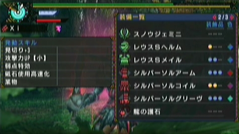 双雷×双剣(8分47秒)装備