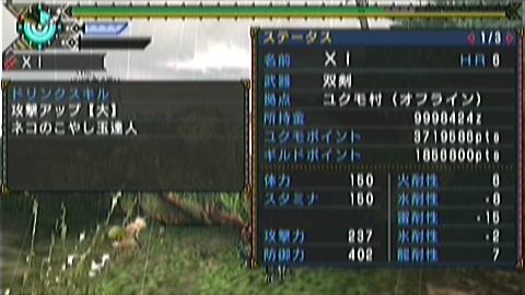 双尾槌×双剣(12分57秒)ステータス