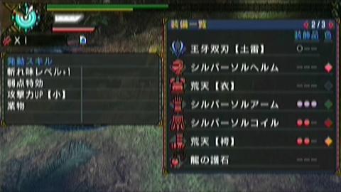 闇中×ガチ双剣(9分06秒)装備