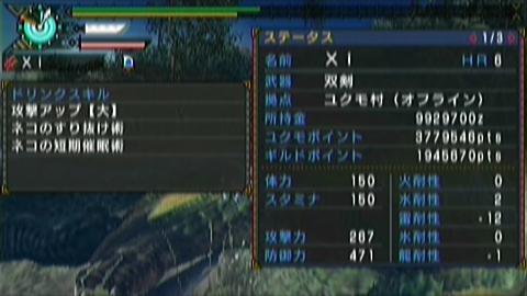 闇中×ガチ双剣(9分06秒)ステータス 短期