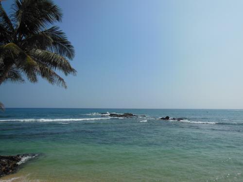 Sri+Lanka+2014+595_convert_20141025221149.jpg