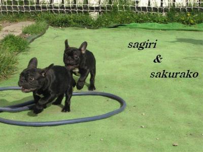 2010年6月5日サギリ&桜子