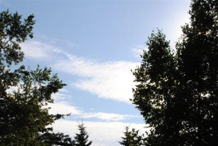 8月27日空