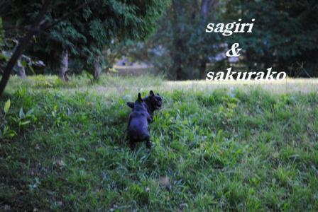 9月13日サギリ&桜子2