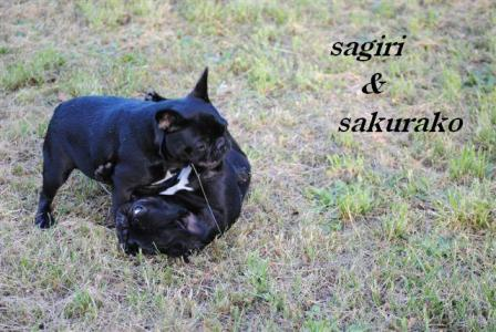 9月13日サギリ&桜子