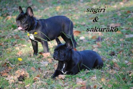 10月22日サギリ&桜子
