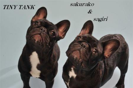 桜子&サギリ2