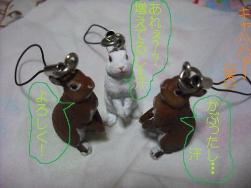 003_20111003101231.jpg