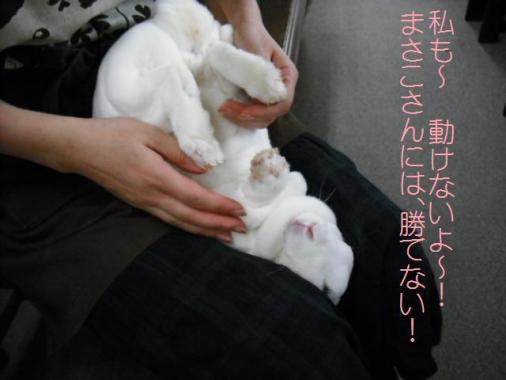 004_20110923073900.jpg