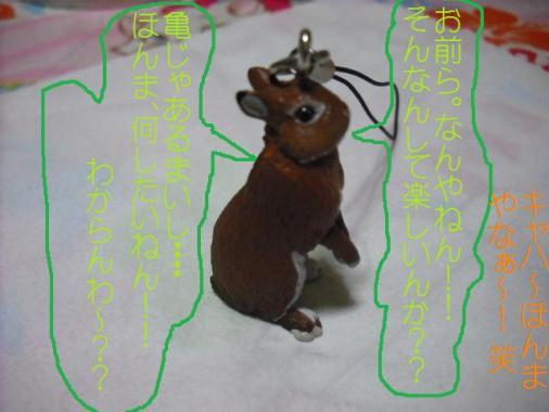 011_20111003101228.jpg