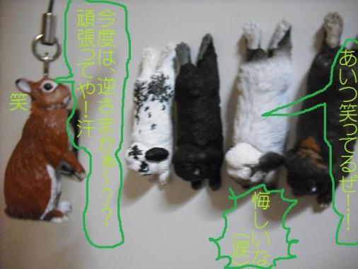 020_20111003101519.jpg