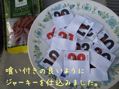 IMGP9049.jpg