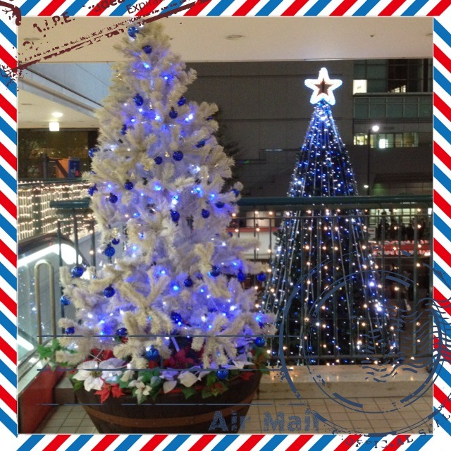 fc2blog_2012111011260484d.jpg