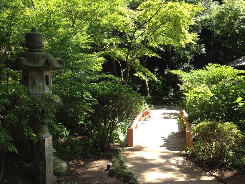 fc2blog_20121213221244831.jpg