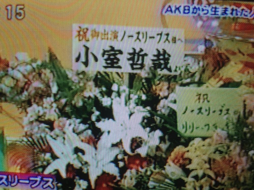 fc2blog_2013011620563111d.jpg