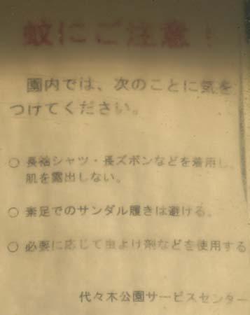 Blog185.jpg