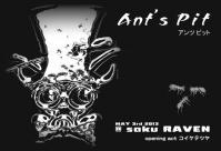 ANT'S PIT1
