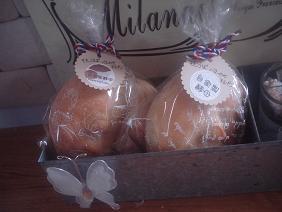 桃酵母のバターのせ丸パン