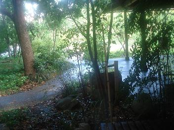 素敵な庭園を眺めながら・・