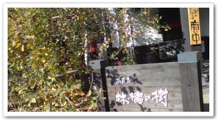 20101120135610-tile.jpg