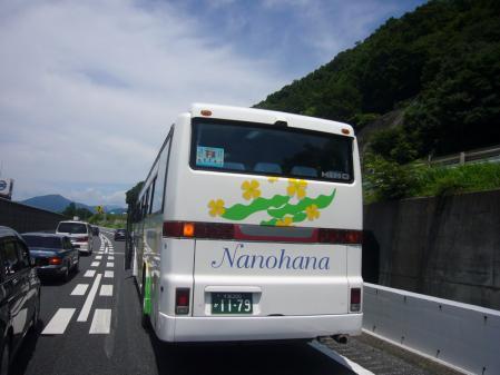 2010-7-10 006
