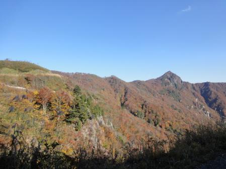 2010-11-6 064