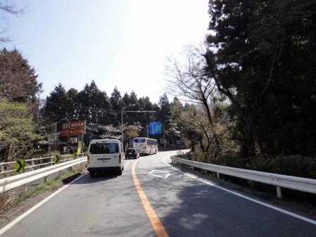 2011-04-170005.jpg