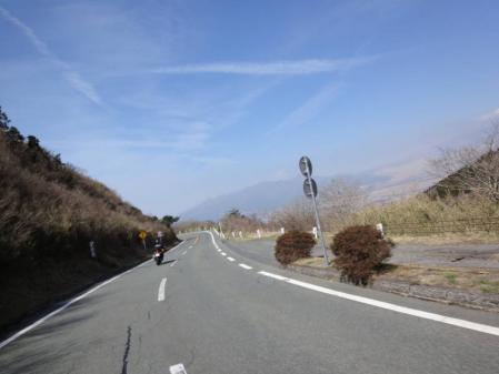 2011-04-170009.jpg