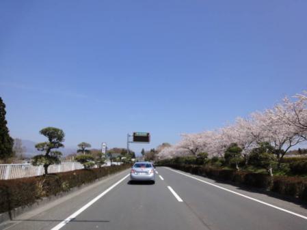 2011-04-170036.jpg