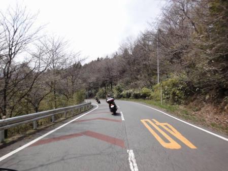2011-04-170047.jpg