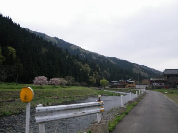 2011-04-300121.jpg