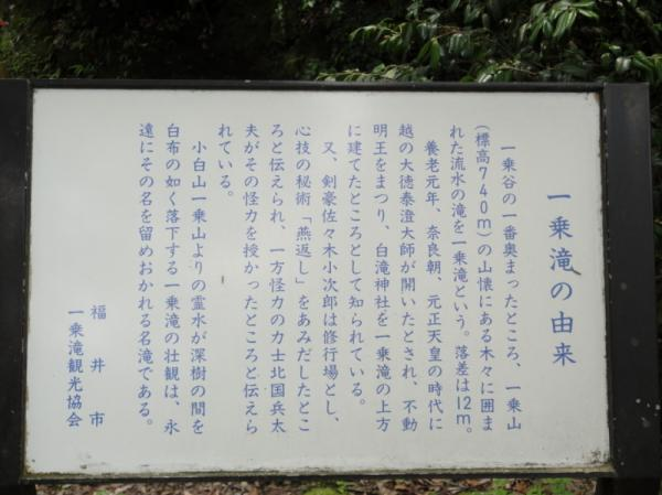 2011-04-300124.jpg