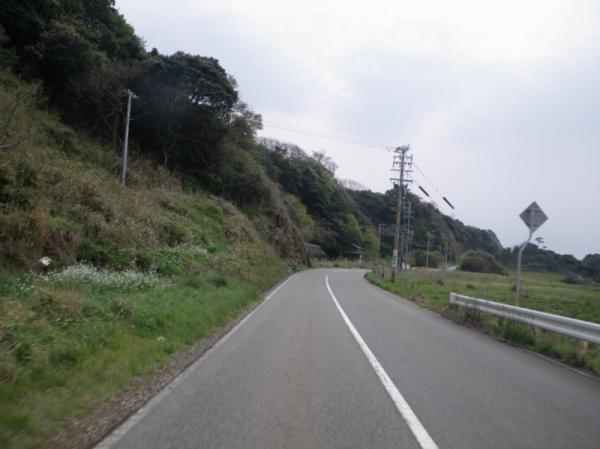 2011-04-300146.jpg