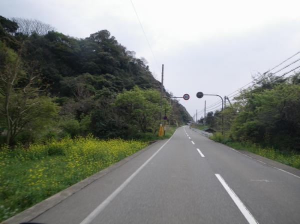 2011-04-300147.jpg