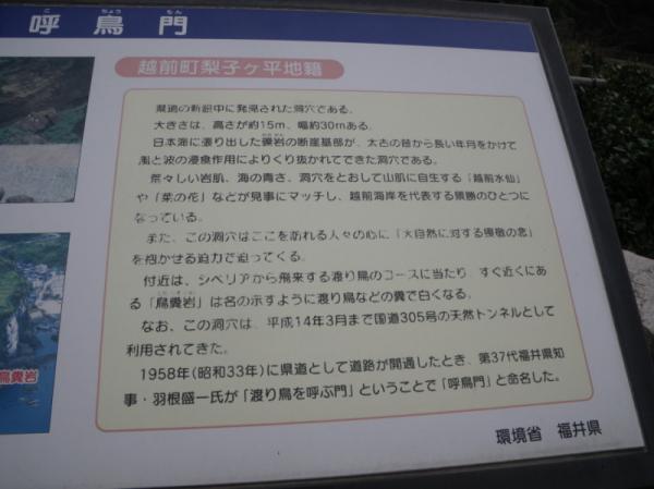 2011-04-300155.jpg
