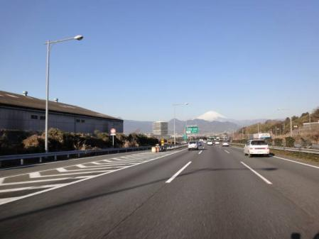 2011-2-26 河津桜0002