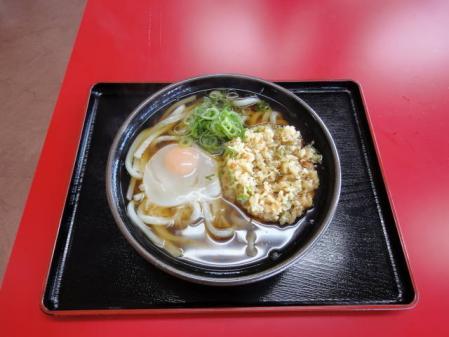 2011-2-26 河津桜0012