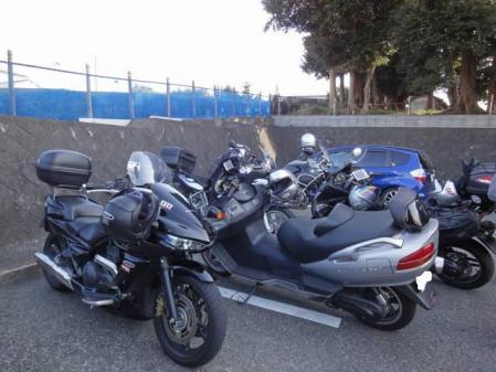 2011-2-26 河津桜0010