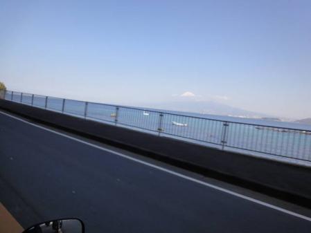 2011-2-26 河津桜0021