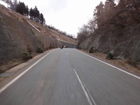 2011-2-26 河津桜0034