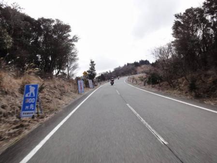 2011-2-26 河津桜0033