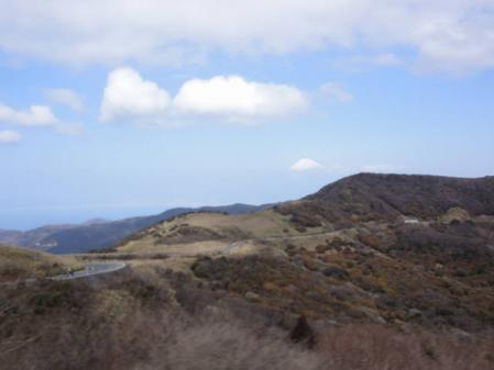 2011-2-26 河津桜0028