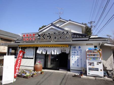 2011-2-26 河津桜0039