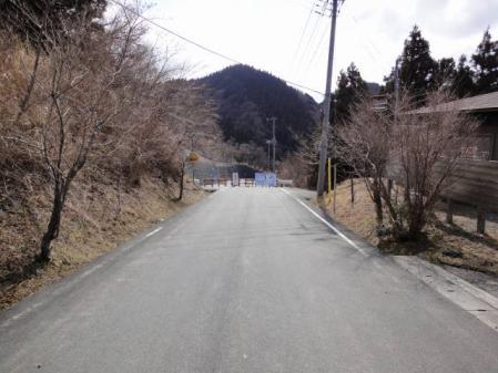 2011-2-26 河津桜0036
