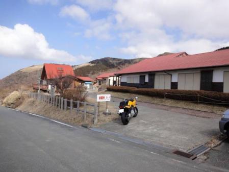 2011-2-26 河津桜0035