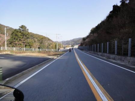 2011-2-26 河津桜0049