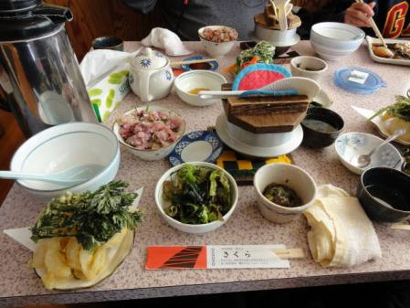 2011-2-26 河津桜0048