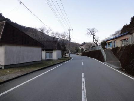 2011-2-26 河津桜0070